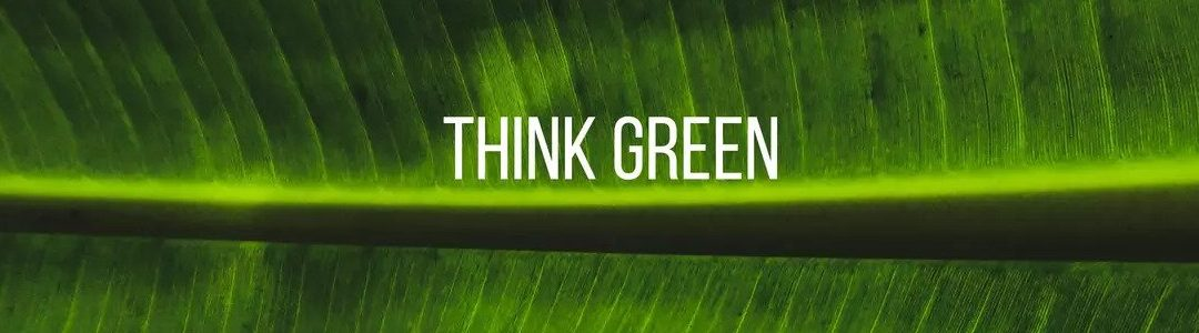 Just How Green is Your Paper
